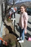 Tree Planting 4