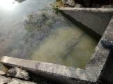 Water Testing3